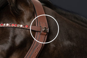 BROWBAND SYSTEM